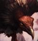 mangomanart's avatar