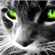 Nexus713's avatar