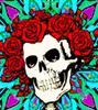 user-16432316's avatar