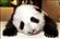 eLJugo's avatar