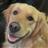 kingkung82's avatar