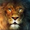ImuneTFM's avatar