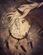 Cantatrix's avatar