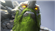 lootfisk69's avatar