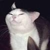 BadMonsin's avatar