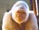 Uglius's avatar