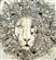 user-21424941's avatar