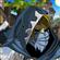Hylung's avatar