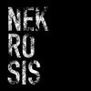 Nekrosis9's avatar