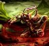 user-21163857's avatar