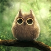 Diwi's avatar