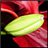 zmauls's avatar