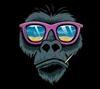 AdrianCPL's avatar