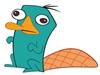 RudG's avatar