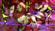 Lost_lyosha's avatar