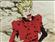 B0b0cat0's avatar