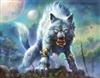 Fenren's avatar