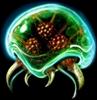 Pit93's avatar