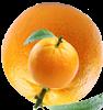 HyperOrange's avatar