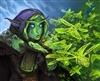 AeroDerek's avatar