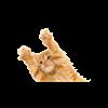 eosjrb's avatar