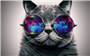 Sacro0's avatar