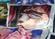 Factod1's avatar