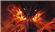 Predator97's avatar