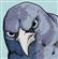 Docta365's avatar