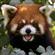user-100108497's avatar