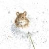Wispa's avatar