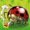 WilkyMay's avatar