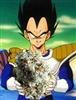 StonedSaiyan's avatar