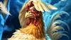 IChocolateBird's avatar