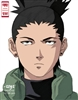 arcan0r's avatar