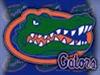 gator7870's avatar